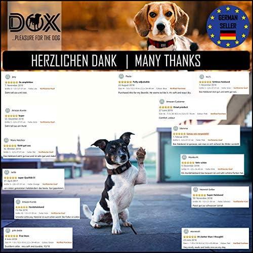 DDOXX Collier Chien Air Mesh, Rembourrée, Réglable   Nombreuses Couleurs & Tailles   pour Petit, Moyen Gros & Grand   Colliers Chat Chiot   Jaune, M