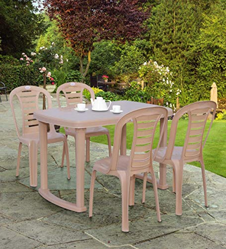 Petals Sultan Rectangular 4 Seater Plastic Dining Set   1 Dining Table with 4 Chairs  Beige