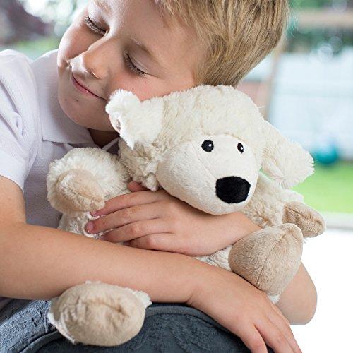 Intelex Cozy Microwaveable Plush, Sheep - Microwaveable Toy