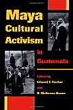 Maya Cultural Activism in Guatemala (Critical Reflections on Latin America Series)