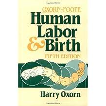 Human Labor & Birth