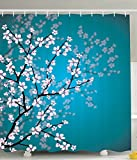 Teal Shower Curtain Ambesonne Teal Shower Curtain Pink Blossoms Decor by, Leaves and Plants Ombre Spring Japanese Sakura Flowers in Garden Park, Fabric Bathroom Decorations, with Hooks, Petrol Blue Pink