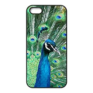 Blue Peacock Hight Quality Plastic Case for Iphone 5s