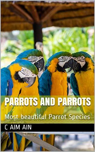 Parrots And Parrots Most Beautiful Parrot Species C Aim
