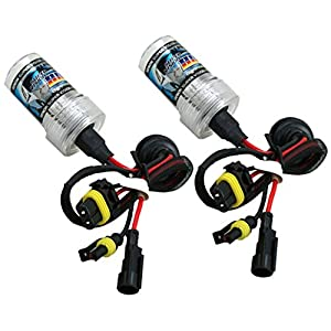 XenTec H1 6000K HID Xenon Bulb (1 Pair, Ultra White color)