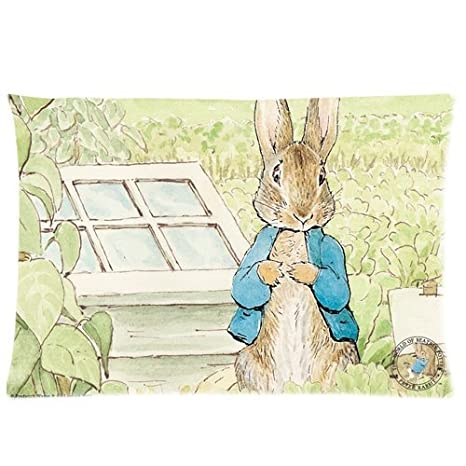 Amazon.com: Peter Rabbit fundas de almohada personalizado ...