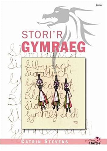 Book Tipyn O'n Hanes: Stori'r Gymraeg (Welsh Edition)