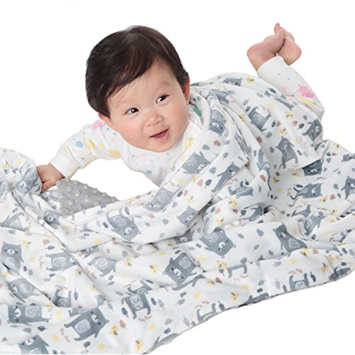 Boritar Baby Blanket for Boys Soft Minky with Double Layer Dotted Backing, Lovely Grey Bear Printed 30