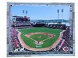 Artissimo Designs Plank Sports Stadium and Arenas Canvas Artwork (Cincinnati Reds)