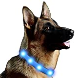 Lalawow LED Dog Collar USB Rechargeable FREE Size 3 Modes Completely Waterproof (Blue)