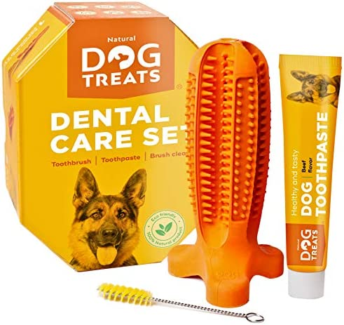 Natural Dog Treats Toothbrush Stick and Toothpaste Beef Flavor Dental Care Cleaning Set, 100% Natural Rubber Chew Toy for Dogs
