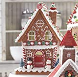 RAZ IMPORTS 13'' GINGERBREAD CHRISTMAS VILLAGE CANDY HOUSE