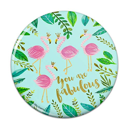 (You are Fabulous Flamingos Princesses Crowns Pinback Button Pin - 3