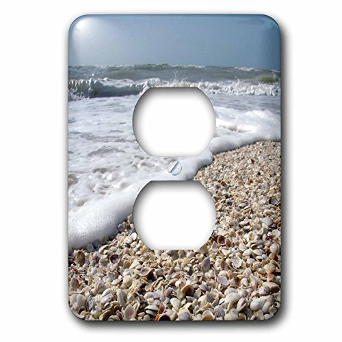 3dRose lsp_89073_6 Seashells, Sanibel Island, Gulf Coast, Florida  Us10 Dfr0166  David R Frazier  2 Plug Outlet - Sanibel Outlet