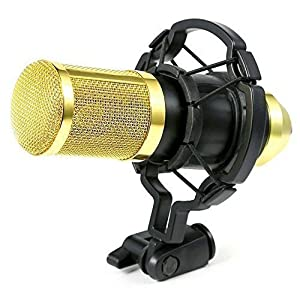 Ohuhu Audio Microphone - Studio Recording Condenser Pro Microphone with Shock Mount Holder Clip