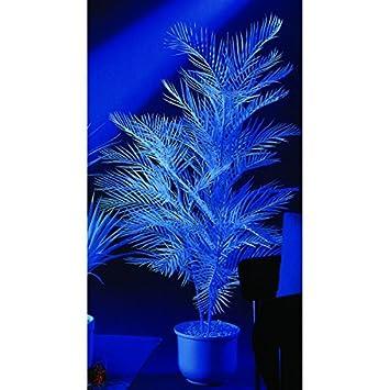 Kunstpflanze Kentiapalme 3fach 170cm uv-white Schwarzlicht