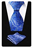 Alizeal Paisley Men's Tie and Pocket Square Sets (59' Length x 3.5' Width, Royal Blue)