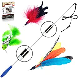 Pet Fit For Life Retractable Interactive Cat or Kitten Wand with 2 Feathers and 1 Soft Furry Combo