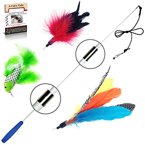 Pet Fit For Life Retractable Interactive Cat or Kitten Wand with 2 Feathers and 1 Soft Furry ()