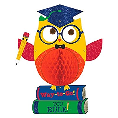 "Congrats Grad! Graduation Party Honeycomb Nerdy Owl Hanging Decoration, Paper, 19"": Toys & Games"