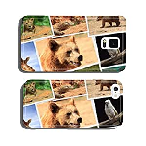 Collection of wild animals photography cell phone cover case iPhone6 Plus