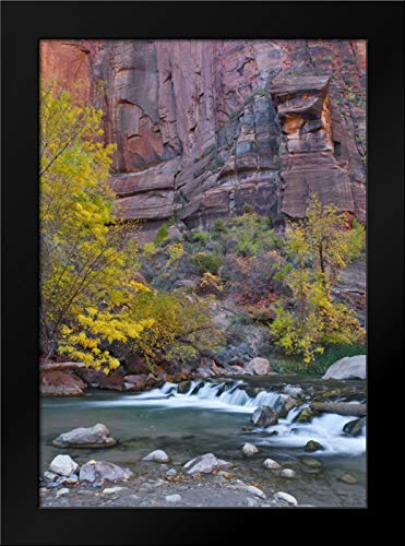 UT, Zion NP The Narrows with Cottonwood Trees Framed Art Print by Rotenberg, ()