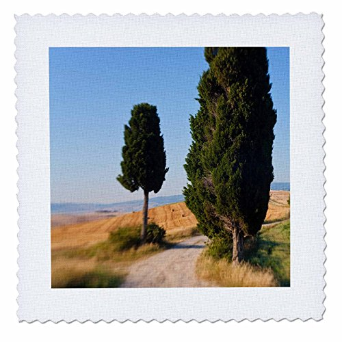 danita-delimont-italy-winding-road-val-d-orica-tuscany-italy-8x8-inch-quilt-square-qs-227671-3