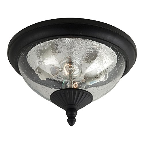 Clear Oxford Seeded Glass (Sea Gull Lighting 88068-12 Lambert Hill Two-Light Outdoor Flush Mount Ceiling Light with Clear Seeded Glass Diffuser, Black Finish)
