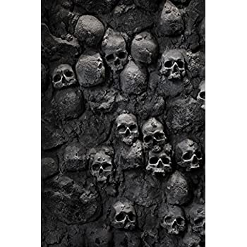 Skulls in Wall Spooky Photo Photograph Cool Wall Decor Art Print Poster 24x36