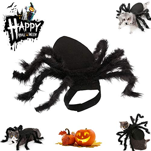 Halloween Pet Spider Costume Cat Funny Party