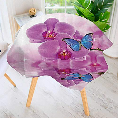 Carnival Padded Bra (Philiphome Easy-Care Cloth Tablecloth Round-Orchid with Butterflies Morpho Reflecti Water Bloom Botany Plant Bra Great for Buffet Table, Parties, Holiday Dinner & More 59
