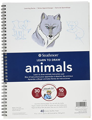 Learn Pads - Strathmore (25-050 Learn to Draw Wire Pad 9