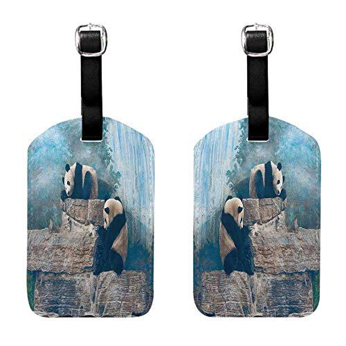 Beijing Panda - Travel ID Bag Tag Animal Decor Collection,Picture of Panda in Beijing Zoo Sitting on Stones Waterfall Painted Wall at the Back,Blue Brown Set of 2