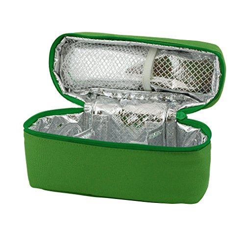 green sprouts Baby Food Travel Case, Green (Baby Travel Food)