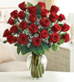 Ultimate Elegance Premium Long Stem Red Roses 24 Stem Red Roses by 1-800 Flowers