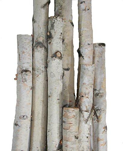 - Wilson Enterprises White Birch Pole Packs, Natural, Kiln Dried White Birch Poles (Small- 3, 4, 5 ft Long x 1.5-2.5 inch Diameter)