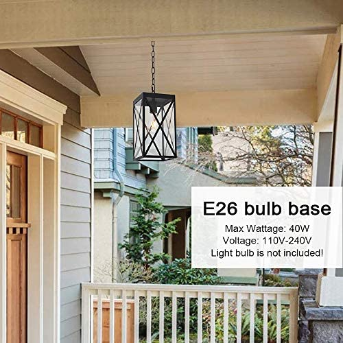 MELUCEE Indoor Outdoor Pendant Light Black Finish, 1-Light Exterior Hanging Light Fixtures Ceiling Lantern with Clear Glass for Porch Hallway Entryway