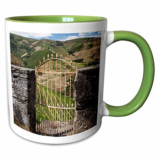 3dRose Danita Delimont - Julie Eggers - Vineyard - Portugal, Douro Valley, Pinhao. The vineyards of the Douro Valley. - 15oz Two-Tone Green Mug ()
