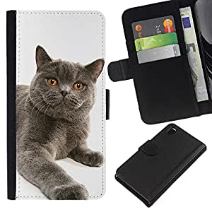Chartreux British Shorthair Siberian Cat - la tarjeta de Crédito Slots PU Funda de cuero Monedero caso cubierta de piel Sony Xperia Z3 D6603