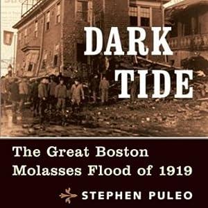 Dark Tide Audiobook