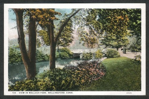 - View in Wallace Park Wallingford CT postcard 1920s