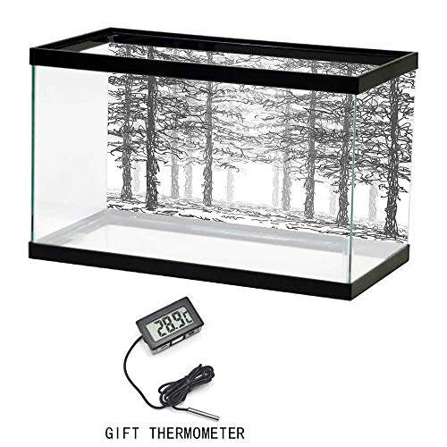 Aquarium Poster, Forest, Monochrome Nature Sketch Abstract Scribble Style Tall Trees Timberland Grove, Black Grey White, 24