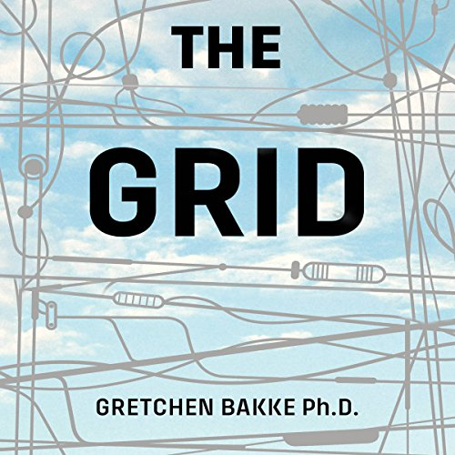Pdf Engineering The Grid: The Fraying Wires Between Americans and Our Energy Future