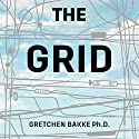 The Grid: The Fraying Wires Between Americans and Our Energy Future Audiobook by Gretchen Bakke Narrated by Emily Caudwell