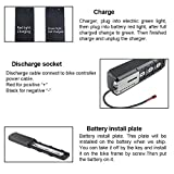 UnitPackPower Electric Bike Battery 36V