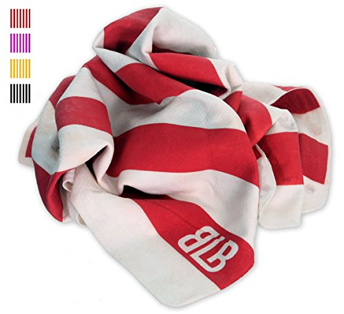 Sports Chamois - Water absorbing synthetic shammy - Large, Red/White