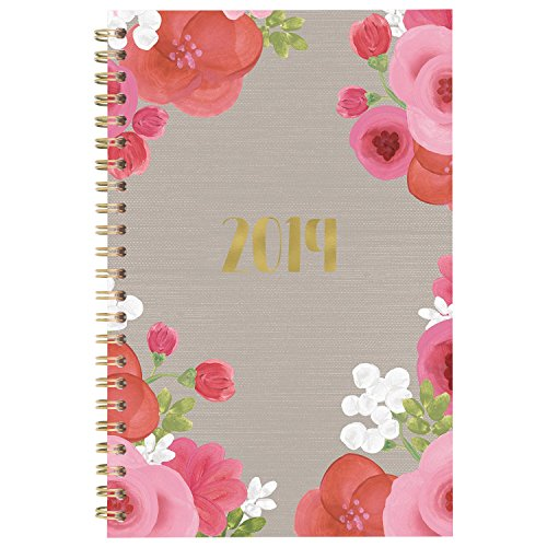 "Cambridge 2019 Weekly & Monthly Planner, 5"" x 8"", Small, Customizable Clear Poly Cover, Arabella (1157-201)"