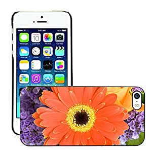 Print Motif Coque de protection Case Cover // M00154707 Fondo hermoso de la floración Cerrar // Apple iPhone 5 5S 5G