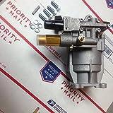 PW2423H Pressure Washer Pump