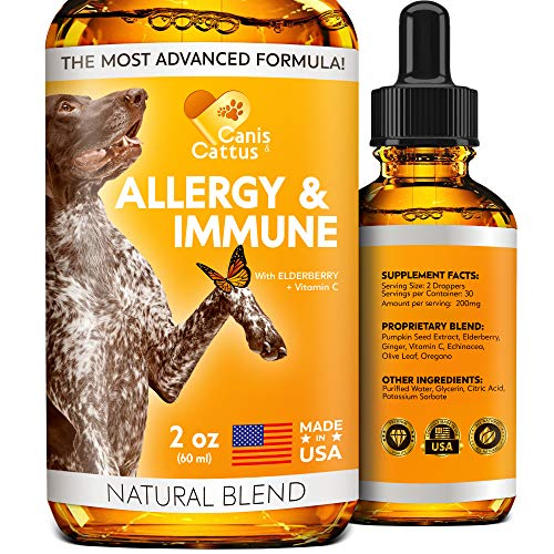 Allergy Immune Supplement for Dogs & Cats – Dog Itch Relief – Dog Skin and Coat Supplement – Allergy Relief for Dogs…